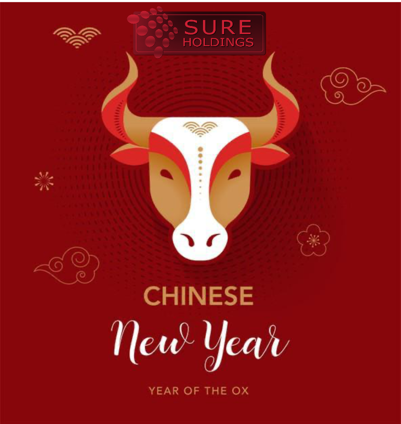 Happy Chinese New Year!!!