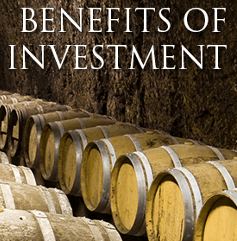 Benefits of investment